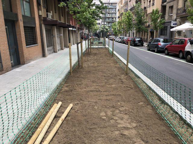 Plantació d'arbres i protecció de la terra vegetal